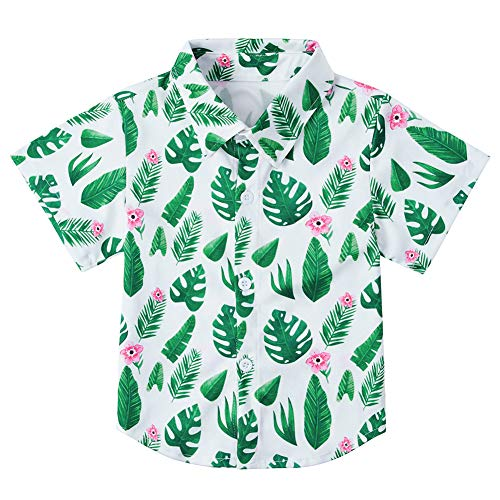 Baby Boys' Hawaiian Tropical Shirts Leaves Leaf Green