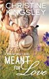 Meant for Love (Willow Valley) (Volume 2)