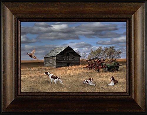 Brittany Spaniel Picture (Distractions By Todd Thunstedt 20x26 Brittany Spaniel English Springer German Shorthair Pointer Dog Ring-necked Pheasant Hunting Outfitter Lodge Mossberg Weatherby Framed Art Print Wall Décor Picture)