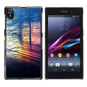 CASECO - Sony Xperia Z1 L39 - Misty Colors - Delgado Negro Plástico caso cubierta Shell Armor Funda Case Cover - Colores Nubladas