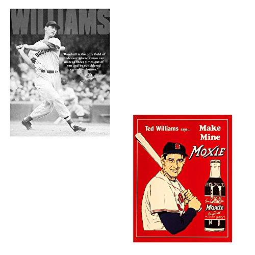 Desperate Enterprises Bundle: Two (2) Ted Williams Tin Signs (#60 & #1507)