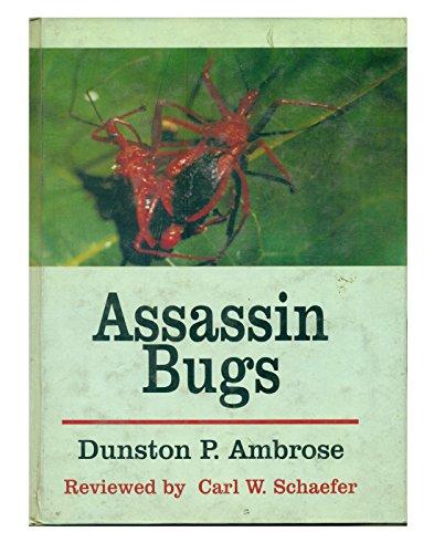 Assassin Bug (Assassin Bugs)