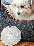 Pearhead Pet Paw Prints Dog or Cat Pawprint DIY
