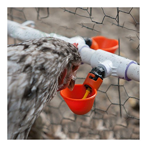 25 Pack Poultry Water Drinking Cups-Chicken Hen Automatic Drinkers PVC Fittings by Unknown