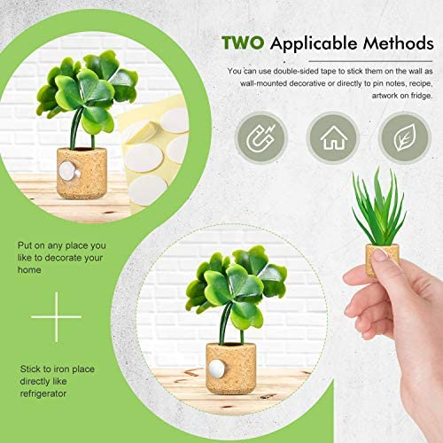 Micro Succulent Terrarium and Magnet Display Tray with Product  Wholesale  Retail  Unique  Handmade Product  Shop Stock Store POS