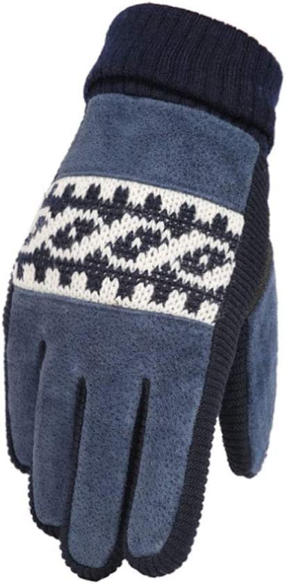 NJ Warm Gloves Mens Outdoor Cold Warm Thickening Plus Pigskin Gloves Color : Blue