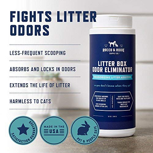 Buy cat litter for urine odor