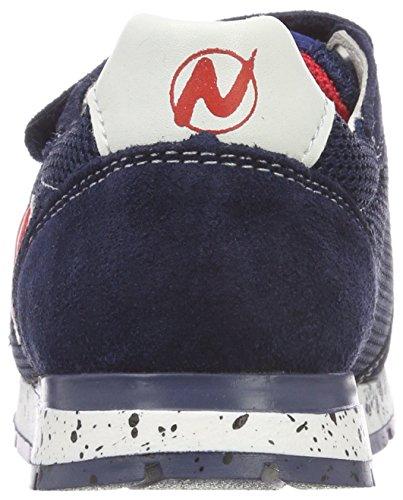 9101 Navy Bomba Naturino Garçon Baskets VL Bleu gn0wYRq
