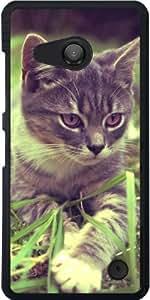 Funda para Microsoft Lumia 550 - Bebé Gatito Gato Al Aire Libre by WonderfulDreamPicture