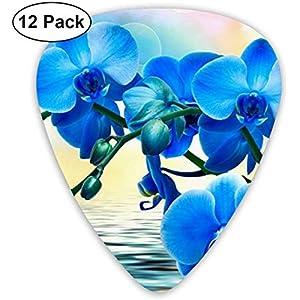 Guitar Picks Wunderschönes Orchidee Premium Celluloid Picks12 Pack enthält dünne, mittlere und schwere, extra schwere…