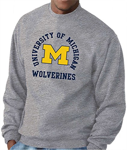 Team Crew Sweatshirt (Michigan Wolverines Adult NCAA Team Spirit Crewneck Sweatshirt - Gray , Large)