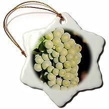 Danita Delimont - Grapes - Grape vines at Mission Hill Family Estate, Kelowna, BC, Canada. - 3 inch Snowflake Porcelain Ornament (orn_205912_1)