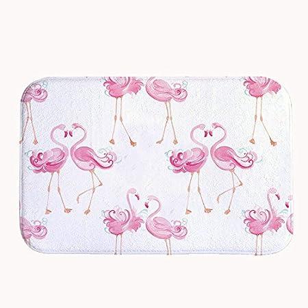 Rioengnakg Pink Flamingo Lovers Bath Mat Coral Fleece Area Rug Door