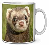 Polecat Ferret Coffee/Tea Mug Christmas Stocking Filler Gift Idea