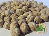 100 Organic Chickpea Seeds by Prorganics