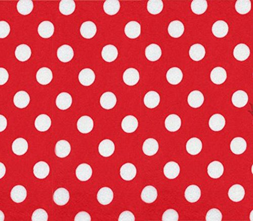 Minky Minnie Polka Dots RED WHITE Fabric / 58