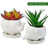 Animals Ceramic Flower Pot, Bantoye 2 Styles Elephants Succulent Planter Pots Cute White Animal...