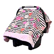 Itzy Ritzy Cozy Happens Infant Car Seat Canopy & Tummy Time Mat, Floral Stripe