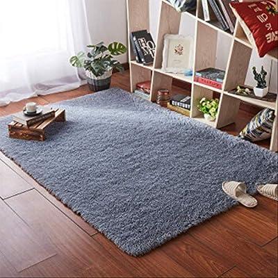 Lzbdkm Carpet European Modern Rectangular Blanket Long Hair Non