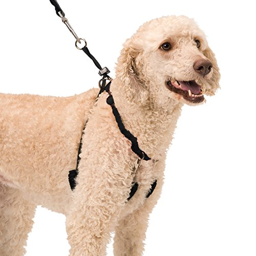 (YUP! Pet Halter, Large, Black)