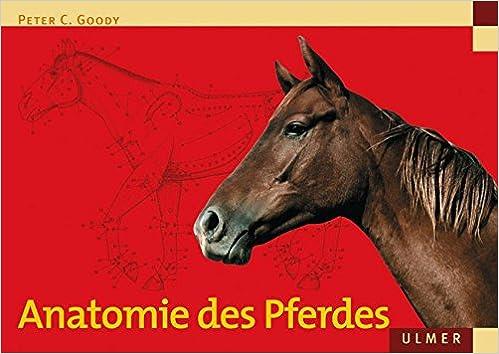 Anatomie des Pferdes (Veterinärmedizin): Amazon.de: Peter C. Goody ...