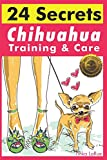 Chihuahua Training & Care: 24 Secrets