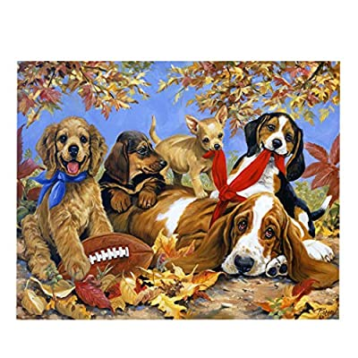 Highpot Highpot Jigsaw Puzzle 1000 Piece for Adults or Kids, Dog Butterfly Landscape Puzzle Modern Home Decor Unique Gift (B): Toys & Games