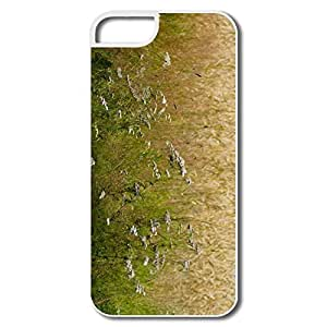 Funny Side Field IPhone 5/5s Case For Him