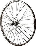 Sta-Tru Silver Steel Coaster Hub Rear Wheel (24X1.75-Inch)