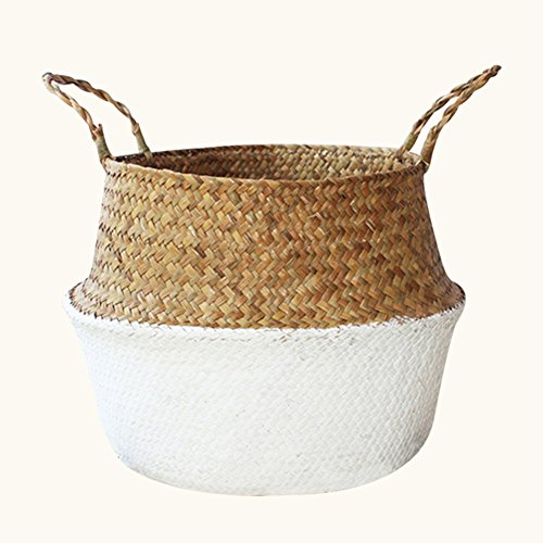 Aneil Woven Belly Storage Basket, Seagrass Planter with Handle, Plant Flower Pots, Home Kitchen Organizer (L, White)