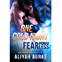 One Cold Night (ARe Fearless Book 3)