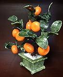Jade Tangerines Tree 20b-3
