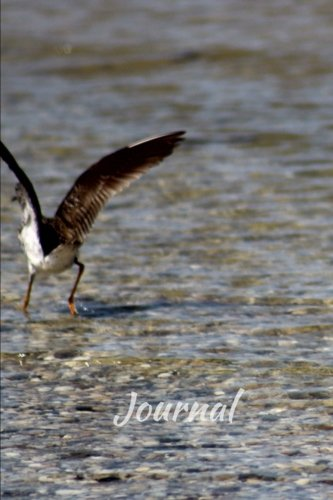 Journal: 6 x 9 Journal Notebook,Wader Bird at The Beach Cover, Blank Journal to Write In (Diary), Ruled Journal, White Paper, 110 Durable Lined Pages