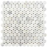 Wallandtile Carrara 1'' Penny Round Honed Waterjet Mosaic Tile