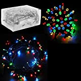 30 Mini Bulb LED Battery Operated Fairy String Lights in Assorted Colors - for Christmas - Wedding - Home Decoration - Crafts (158