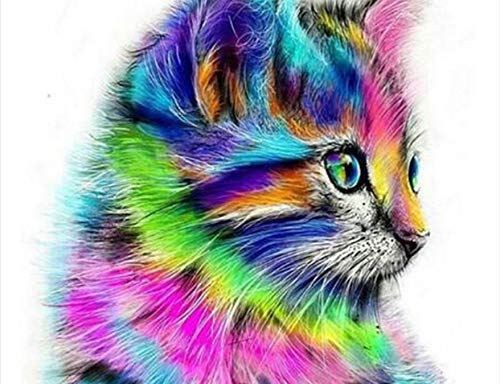 ZLLZY DIY Pintura por Números Rameless Abstracto Gato Animal Pintura Acrílica sobre Lienzo Dibujo Pintura por Números Git Único En La Pared 16X20 Pulgadas