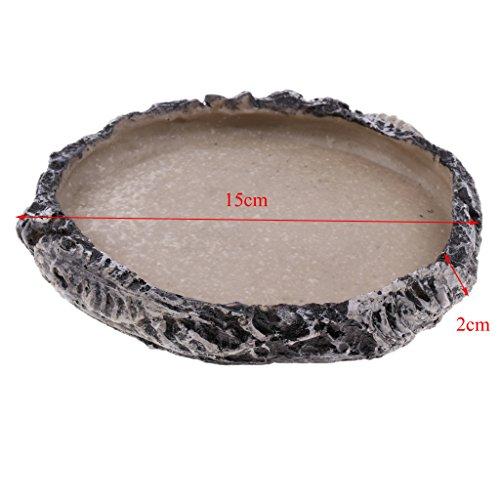 Blesiya Reptile Home Decoration Resin Feeding Bowl Tortoise Gecko Food Water Dish, Dia. 15cm/5.91inch by Blesiya (Image #8)
