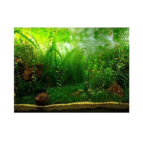 Aquarium Fish Tank Background Poster PVC Adhesive Decor Paper Green Water Grass Aquatic Style Like Real(6130cm)
