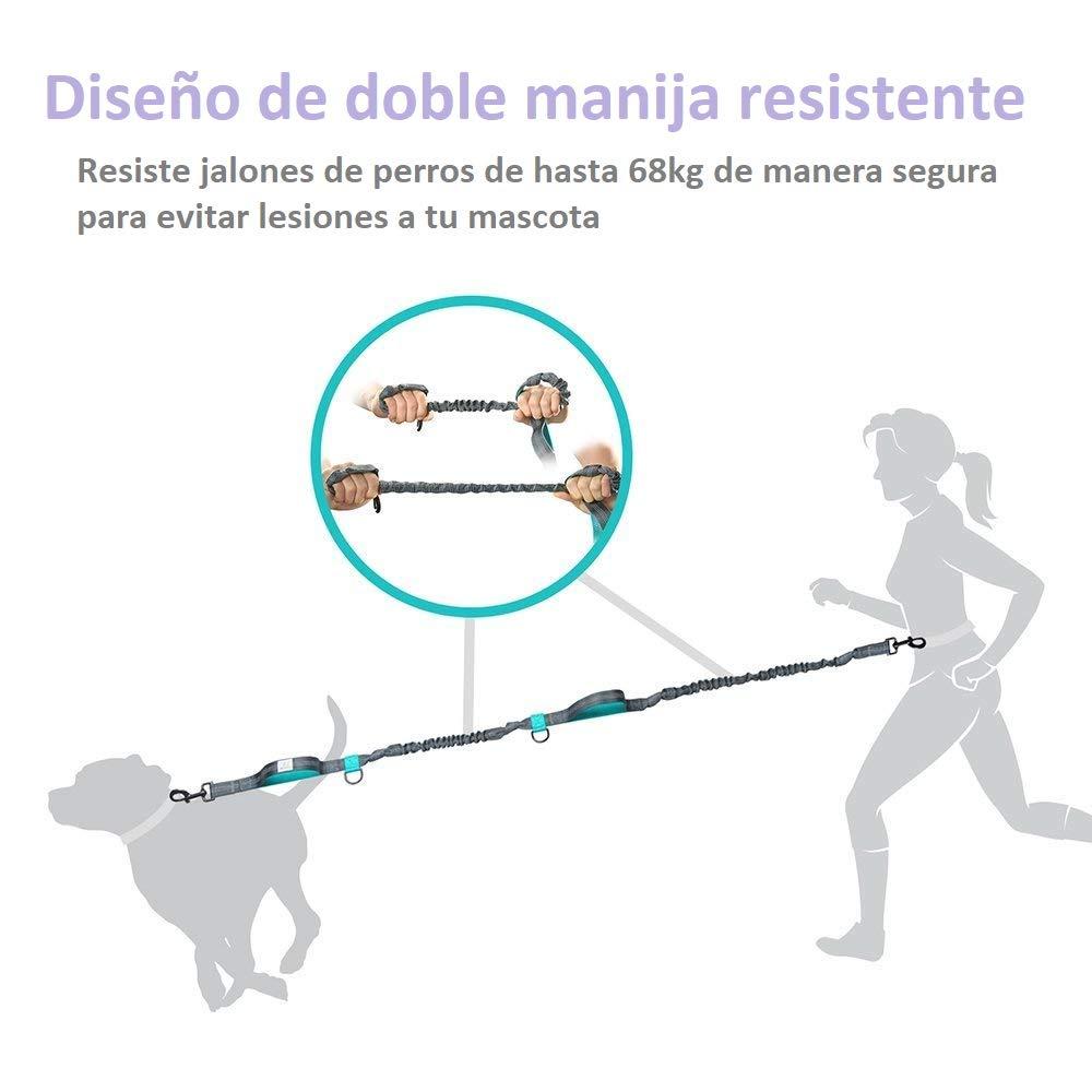 8f0ac43ae Cachora Humana Correa para Perro Premium Manos Libres