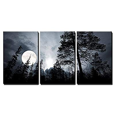 Full Moon in The Forest - Canvas Art Wall Art - 24