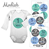 12 Monthly Baby Stickers, Blue, Teal, Gray, Tribal, Arrows, Chevron, Baby Boy Month Stickers, Baby Book Keepsake, Baby Shower Gift