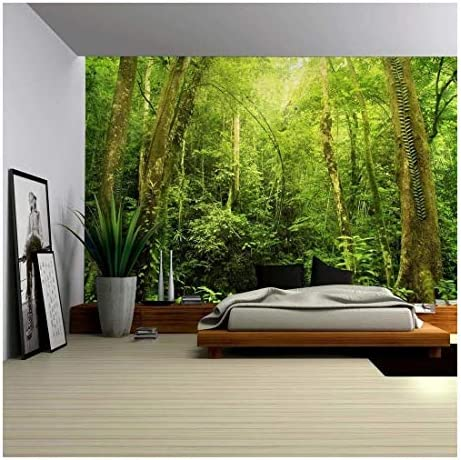 Entrance to a Dark Leafy Forest Wall Mural