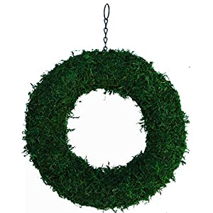 """15"""" Green Moss Living Wreath Form Round, Natural-Organic Original Plus Package of 50 Topiary Pins 24"""