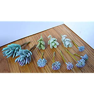 11 Pieces Artificial Mini Plants Gray Flocking Grass Plants Blue Succulents Decorative Flowers Artificial Arrangement 6