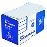 Avery Continuous Form Computer Labels for Pin-Fed Printers 5' x 2-15/16', Box of 3,000 (4076)