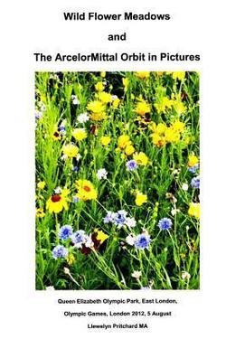 llewelyn-pritchard-wild-flower-meadows-and-the-arcelormittal-orbit-in-pictures-paperback-italian-201