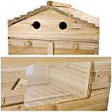Mophorn 2 Layers Bee Hive Boxes Without 7Pcs Auto