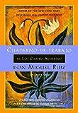 Cuaderno de Trabajo de Los Cuatro Acuerdos (Un Libro De La Sabiduria Tolteca) (A Toltec Wisdom Book)