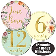 Newborn Baby Girl Gold Floral Monthly Stickers - Great Shower Registry Gift or Scrapbook Photo Keepsake