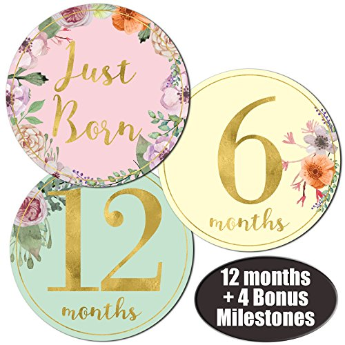 Newborn Baby Girl Gold Floral Monthly Stickers - Great Shower Registry Gift or Scrapbook Photo - Stores Offer Free That Online Shipping